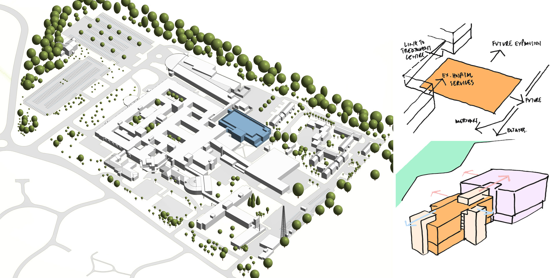 Site Plan & Sketch